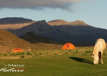 Trek high Atlas Morocco