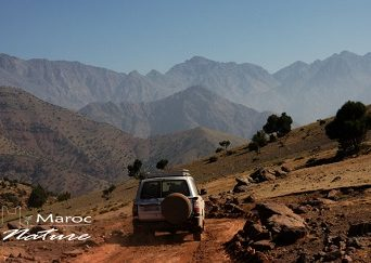 Marrakech Desert & Atlas day tour